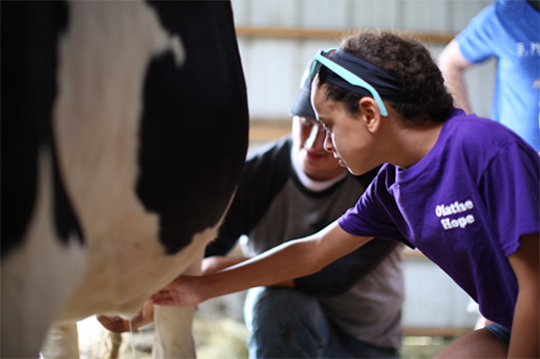 Sign Up For Farm Tours And Special Events Shatto Milk Company